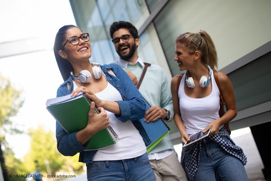 Studieren - Studienfächer und Fächergruppen