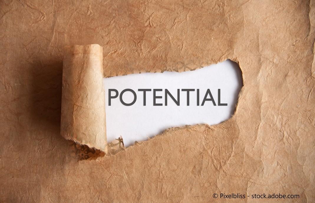 sein Potenzial finden